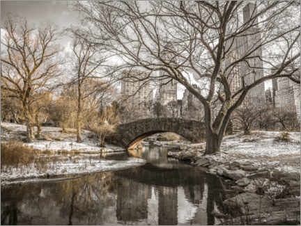 Canvas print  Central Park New York in winter - Assaf Frank
