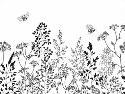 Colouring poster Summer herbs