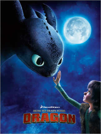 Canvas print  How to Train Your Dragon