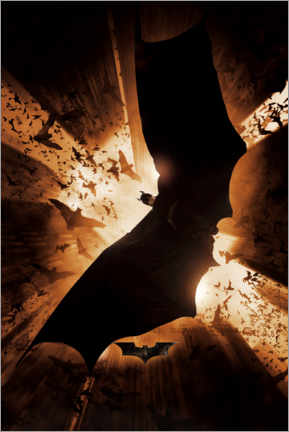 Premium poster  Batman Begins 2005 - Shadow