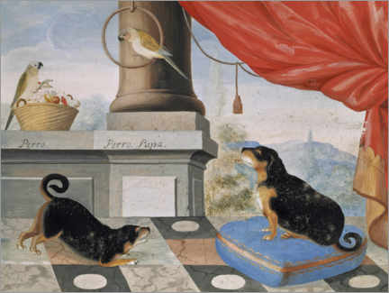 Aluminium print  Two dogs and two parrots on a terrace - Philip Jacob Thelott
