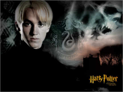 Premium poster  The Goblet of Fire - Draco Malfoy