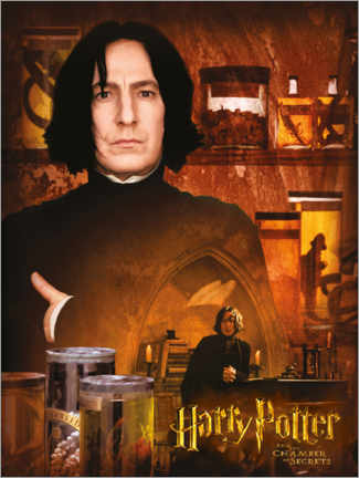 Premium poster  Severus Snape and the Chamber of Secrets
