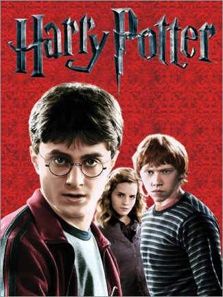 Premium poster  Harry Potter - The Deathly Hallows I