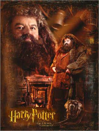 Premium poster Rubeus Hagrid and the Chamber of Secrets