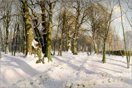 Foam board print  Snowy winter forest in the sunlight - Peder Mørk Mønsted