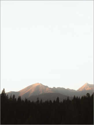 Gallery print  Mountains and forest in the morning light - Lukas Saalfrank
