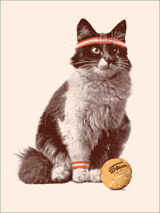 Premium poster  Cat playing tennis - Florent Bodart