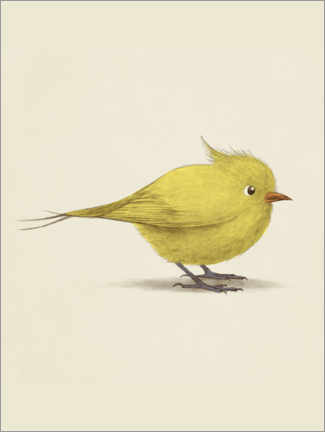 Premium poster  Yellow Bird - Terry Fan