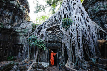 Premium poster Temple in the jungle, Angkor