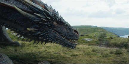 Canvas print  Game of Thrones - Viserion