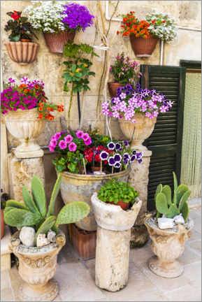 Premium poster Colorful flowers in planters