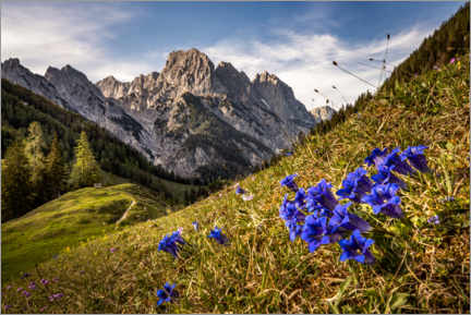 Gallery print  Spring in the mountains - Fotomagie