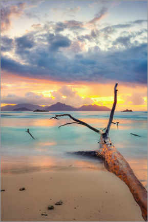 Gallery print  Colors of the Seychelles - Silvio Schoisswohl