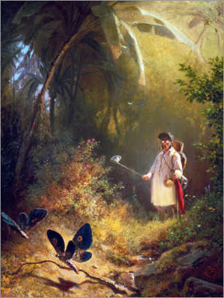 Acrylic print  The Butterfly Hunter - Carl Spitzweg
