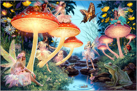 Steve Read - 23979 Toadstool Brook Hidden Object