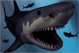 Mark Stevenson - A Megalodon shark from the Cenozoic Era.