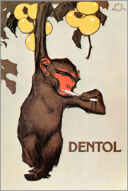 All monkeys brush your teeth!