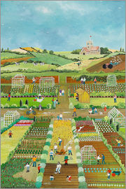 Judy Joel - Allotments