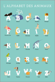 Kidz Collection - Alphabet of Animals - French