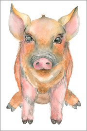 Kidz Collection - Watercolor Pig
