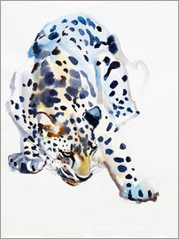 Mark Adlington - Arabian Leopard