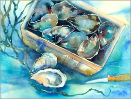 Jitka Krause - oysters