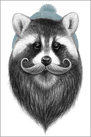 Nikita Korenkov - Bearded raccoon