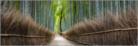 Jan Christopher Becke - Bamboo Forest Panorama in Sagano Arashiyama in Kyoto, Japan
