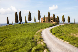 Matteo Colombo - Farmhouse with cypresses in Tuscany