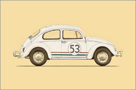 Florent Bodart - beetle