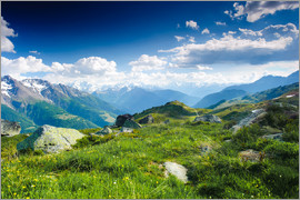 Peter Wey - Mountain panorama from Fiescheralp, Switzerland