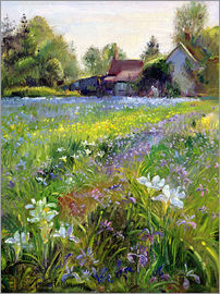 Timothy Easton - Cottage in the country