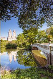 Matteo Colombo - Famous bow bridge in Central Park, New York city, USA