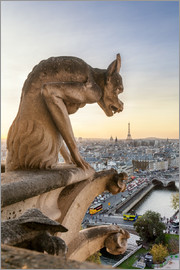 Matteo Colombo - Famous Notre Dame gargoyle and city of Paris