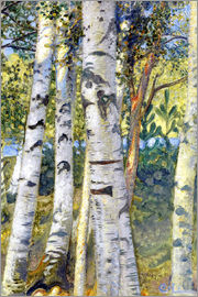 Carl Larsson - Birch trunks
