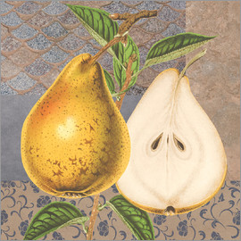 Gail Fraser - Pear and patterns