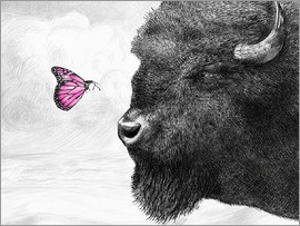 Eric Fan - Bison And Butterfly Poster Lounge