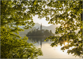 Mike Clegg Photography - Bled in the morning, Slovenia