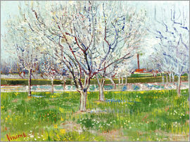Vincent van Gogh - Blossoming orchard