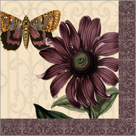 Gail Fraser - Flower and butterfly