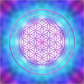 Dolphins DreamDesign - Flower of Life - Intuition