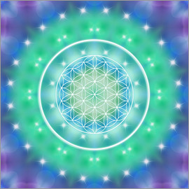 Dolphins DreamDesign - Flower of Life - Relaxation