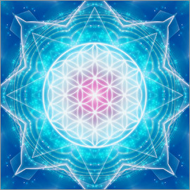 Dolphins DreamDesign - Flower of Life - Multidimensionality