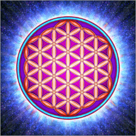 Dirk Czarnota - Flower Of Life - Primal Energy