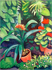 August Macke - Flowers in the Garden, Clivia and Pelargoniums