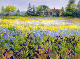 Timothy Easton - field of flowers