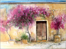 Eckard Funck - Bougainvillea on Mallorca
