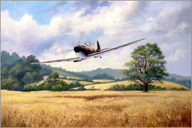 Rob Johnson - British Supermarine Spitfire MK1
