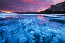 Miles Ertman - Bubbles and Cracks in the Ice with Kista Peak in the Background at Sunrise, Abraham Lake, Alberta, C